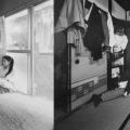 11_shinjin_panorama