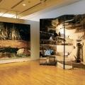 FoldingScreen_Mural