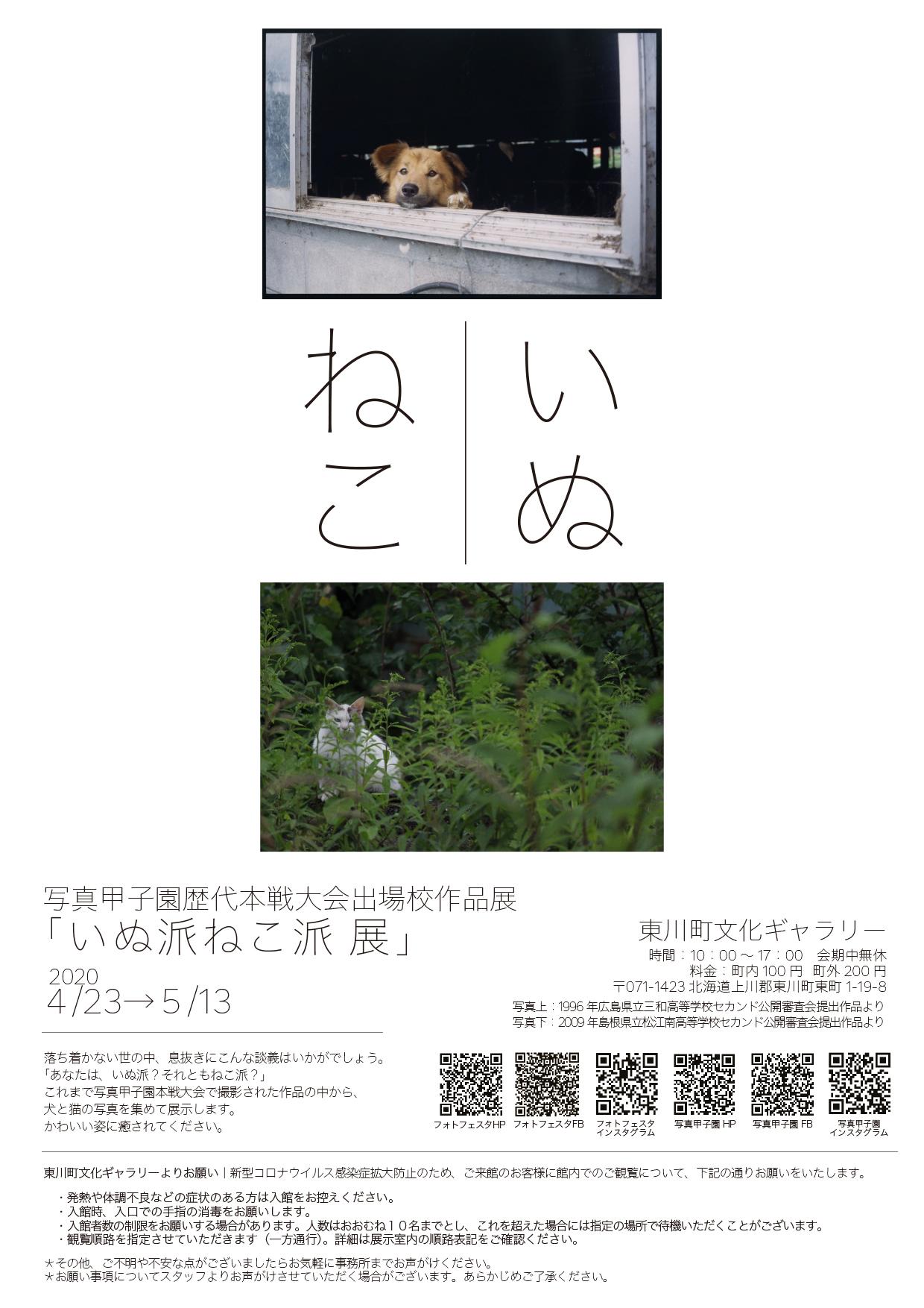 写真甲子園歴代本戦大会出場校作品展「いぬ派ねこ派 展」